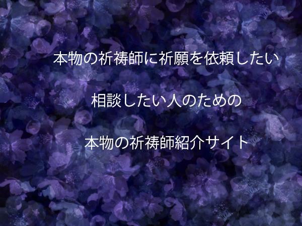 gazou11218.jpg